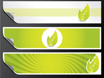 Eco banner set. In green color Royalty Free Stock Photos