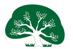 Eco Baum lizenzfreie abbildung