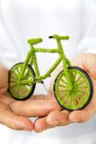 Eco bicycle icon Royalty Free Stock Photo