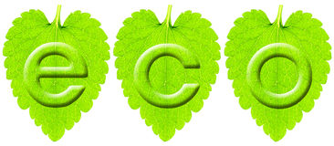 Eco Bild Stockfoto