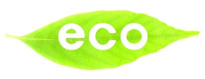 Eco Bild Stockfotografie