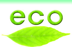 Eco Bild Lizenzfreies Stockfoto