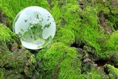 Eco Bild Lizenzfreie Stockfotografie