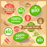 Eco and bio labels Royalty Free Stock Images