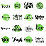 Eco, Bio, Organic, Gluten free, Natural food, Vegan Lettering. Modern Hand Drawn Ecological Icons and Badges against Royalty Free Stock Image