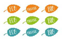 Eco, bio and organic vector set for web and print. Hand drawn typography on colorful leaves. stock illustration