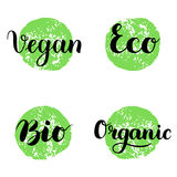 Eco, Bio, Organic, Vegan Lettering. Modern Hand Drawn Ecological Icons and Badges against green circle. Brush Stock Photo