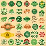 ECO & BIO tecken Arkivbild