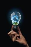 Eco-Birne Lizenzfreies Stockfoto
