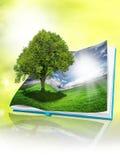 Eco book Stock Photos