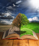 Eco book Royalty Free Stock Image