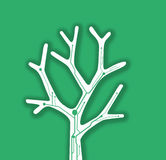 Eco branch tree background Stock Photography