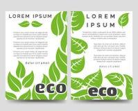 Eco broschyrmall med gröna sidor vektor illustrationer