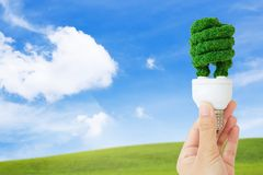 Eco bulb. Concept image of eco energy Royalty Free Stock Photos