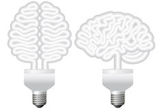 Eco bulb brain, vector Royalty Free Stock Image