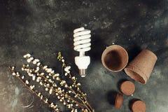 Eco bulb energy saving concept. Eco bulb energy saving reuse recycle concept royalty free stock photo