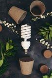 Eco bulb energy saving concept. Eco bulb energy saving reuse recycle concept royalty free stock photography