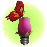 Eco bulb flower with butterfly. Vector eps10 Stock Photos