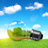 Eco bulb in grass. Royalty Free Stock Images