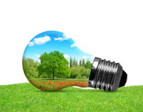 Eco bulb in grass on white background. Stock Image
