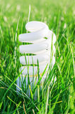 Eco bulb in green grass Royalty Free Stock Photography