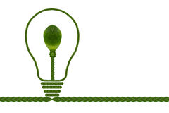 Eco Bulb with green leaf Stock Images