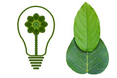 Eco Bulb with green leaf. Idea light bulb from leaf.( ECO  concept Royalty Free Stock Image