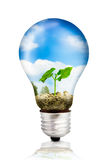 Eco bulb with green plant Royalty Free Stock Images