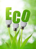 Eco bulb growing on plant. Royalty Free Stock Photography