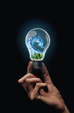 Eco bulb Royalty Free Stock Photo