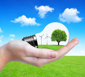 Eco bulb in hand Stock Photography