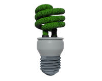 Green Grass Fluorescent Bulb. Eco Bulb made of Grass Royalty Free Stock Photo