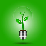 Eco bulb with plant green vector Royalty Free Stock Photos