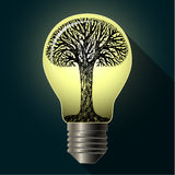 Eco bulb with tree Stock Photography