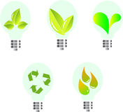 Eco bulbs. Ecological electric bulbs with green leafs Stock Images