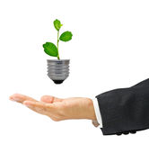 Eco business Royalty Free Stock Photos