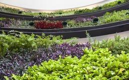 Eco byggnad Arkivbilder