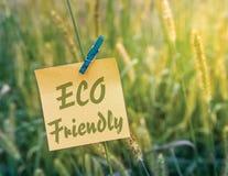 Eco cómodo Foto de archivo libre de regalías