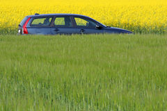 Eco car. Modern car between yellow and green fields Royalty Free Stock Image