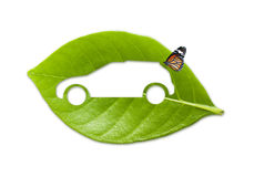 Eco car with natural wholesome Royalty Free Stock Photos