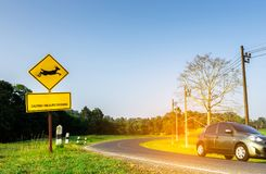 Eco car of the tourist driving with caution during travel at curve asphalt road near yellow traffic sign with deer jumping inside. The sign and have message ` Royalty Free Stock Photo