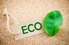 Eco cardboard label. Royalty Free Stock Photography
