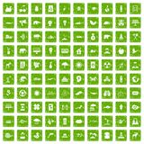 100 eco care icons set grunge green. 100 eco care icons set in grunge style green color isolated on white background vector illustration royalty free illustration