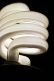 Eco Coils. A closeup of an energy saver compact flourescent light bulb Stock Photos