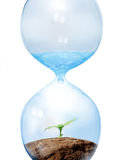 Eco concept. Nature in Hourglass.Eco concept Royalty Free Stock Photos