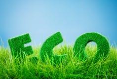 Eco concept Stock Photography