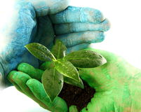 Eco concept. Blue and green hand Royalty Free Stock Images