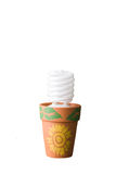 Eco concept bulb in pot with clipping path. Ecofriendly concept compact fluorescent bulb in clay pot with clipping path royalty free stock image