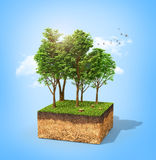Eco concept. Cross section of ground with tall trees on a blue. 3d illustration Stock Photos