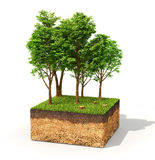 Eco concept. Royalty Free Stock Images